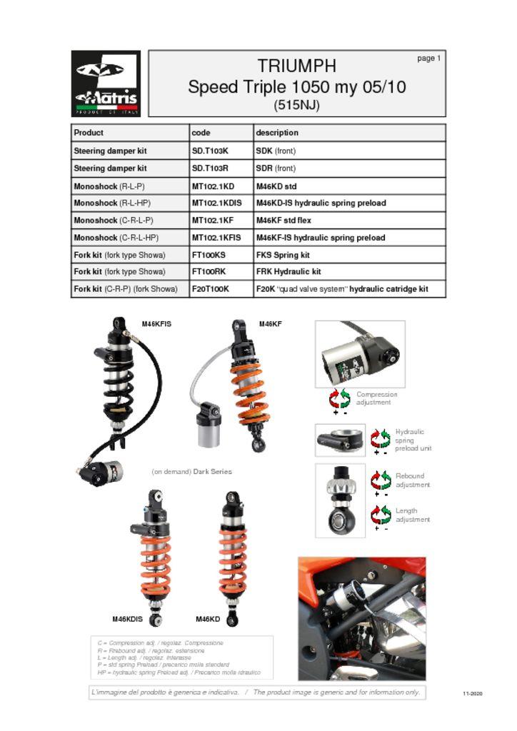 thumbnail of Triumph Speed Triple 1050 05-10 web